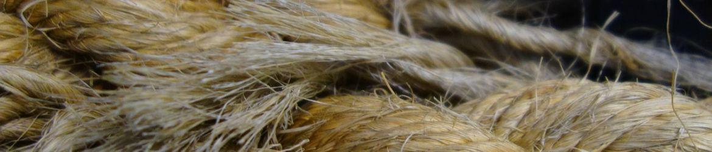 canapa fibra